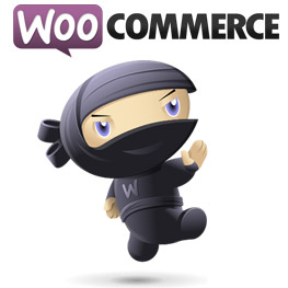 Why Not WooCommerce?
